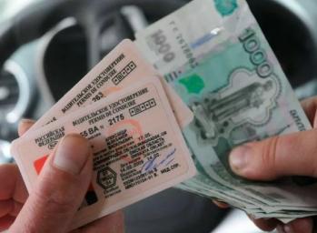 Как быстро оплатить пошлину на водительские права в 2021 году и получить новый документ в сжатые сроки?